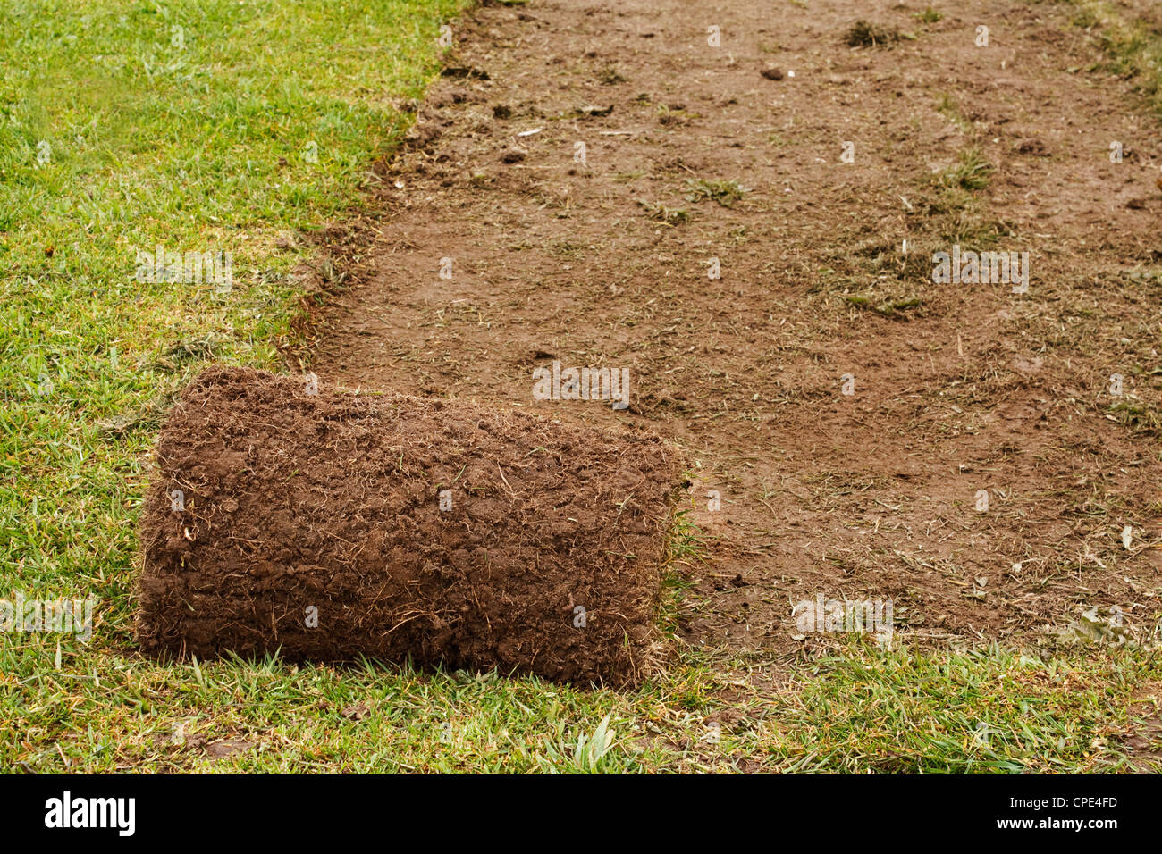 A roll of freshly cut turf used to make the perfect lawn Stock Photo
