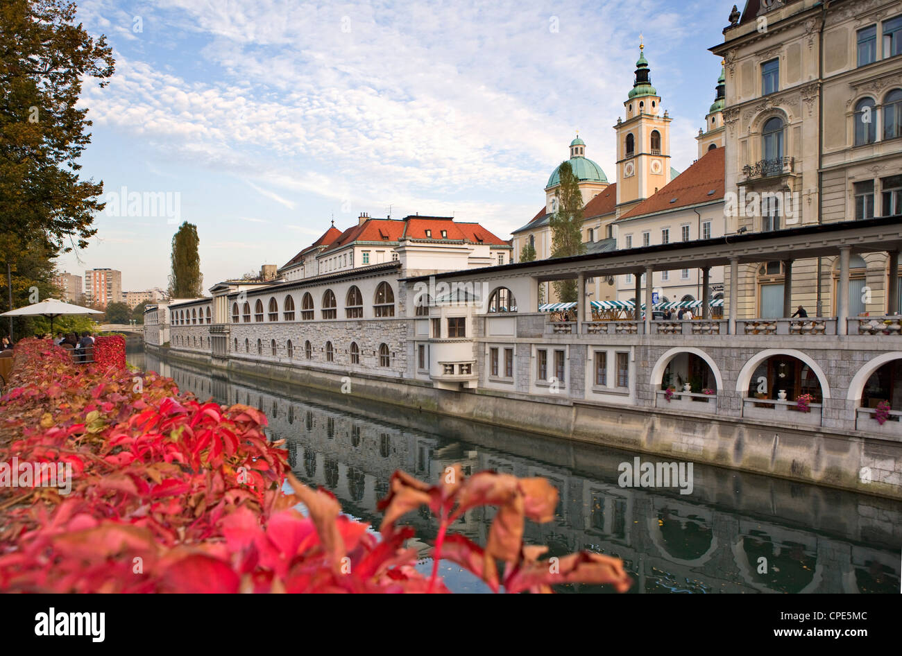 Riverside market halls and the Cathedral of St. Nicholas on the Ljubljanica River, Ljubljana, Slovenia, Europe - Stock Image