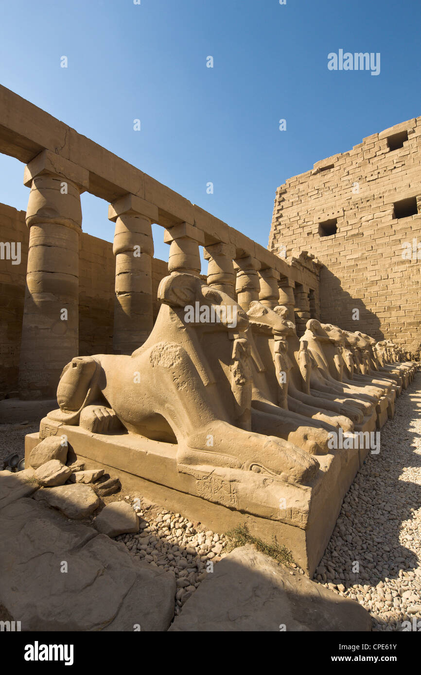 Ram headed sphinxes beyond the first pylon at Karnak Temple, Karnak, Thebes, UNESCO World Heritage Site, Egypt, - Stock Image