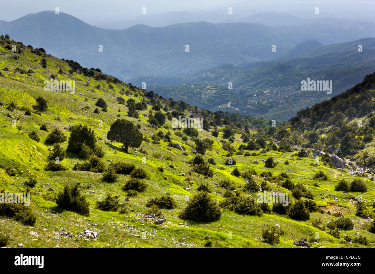 Early evening on the slopes below Astraka and above the Papingo villages, Epirus, Greece, Europe - Stock Image