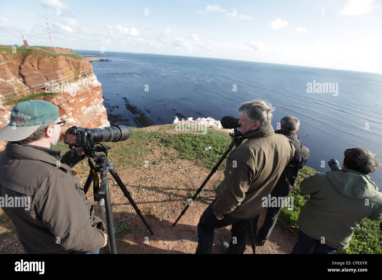 Wildlife photographers watching bird colonies on the cliff-tops of Helgoland, Germany, North Sea Stock Photo