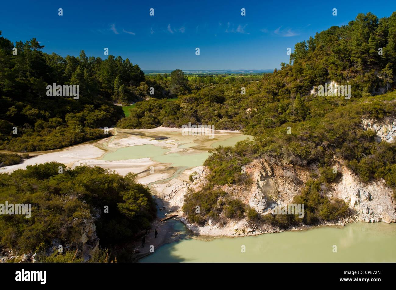 Wai-O-Tapu Thermal Wonderland, North Island, New Zealand, Pacific - Stock Image