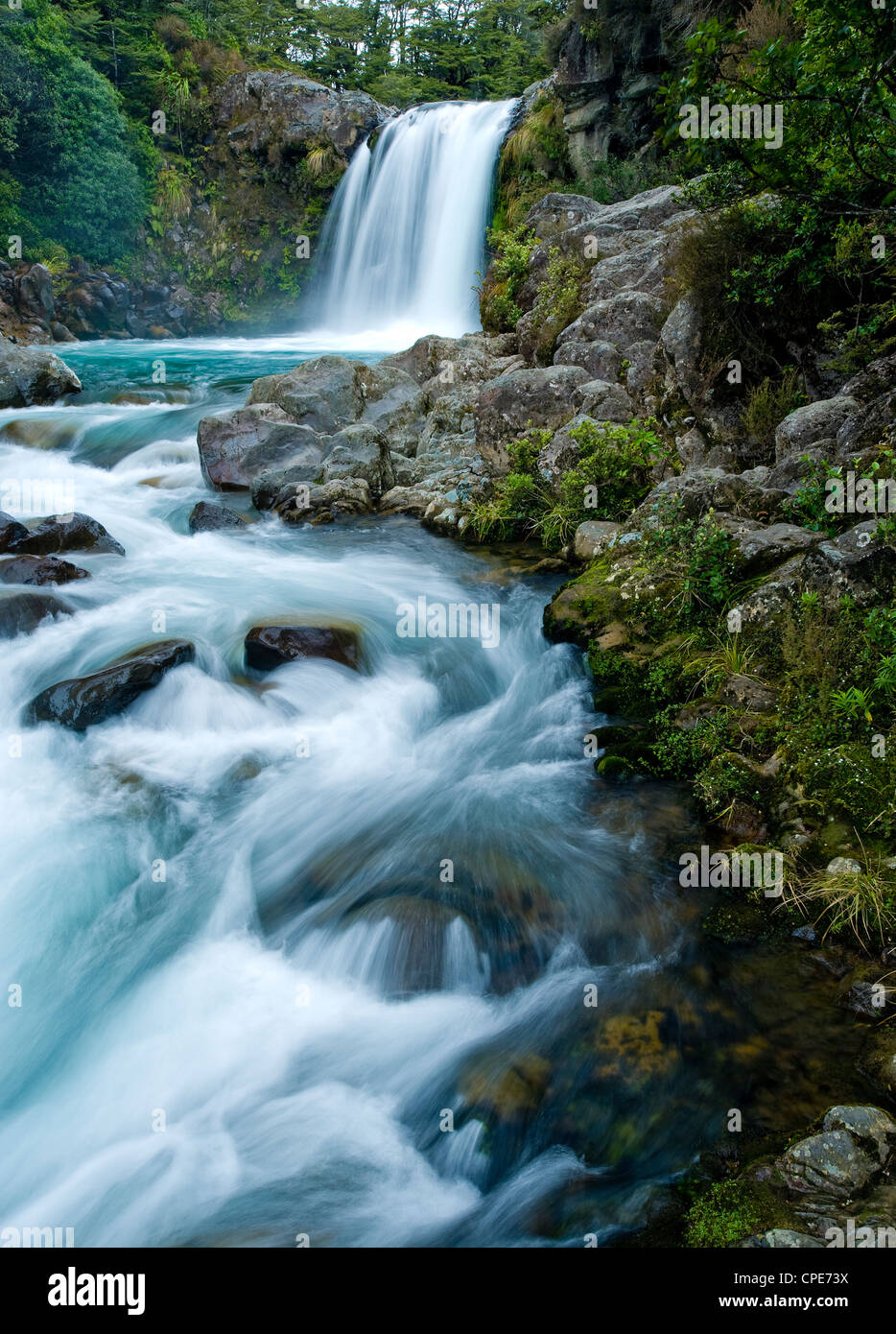 Tawhai Falls, Tongariro National Park, UNESCO World Heritage Site, North Island, New Zealand, Pacific - Stock Image