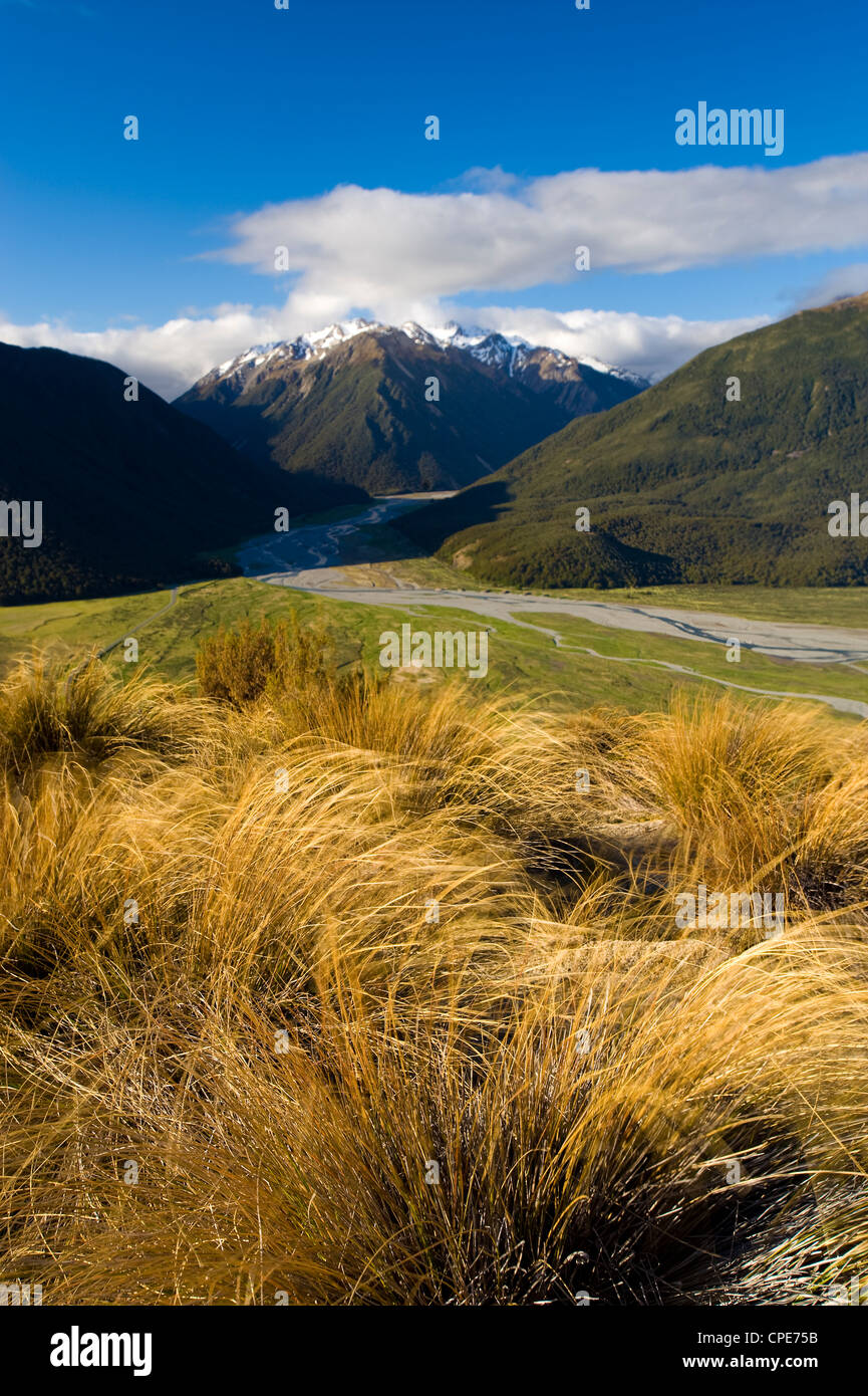 Arthur's Pass National Park, South Island, New Zealand, Pacific - Stock Image