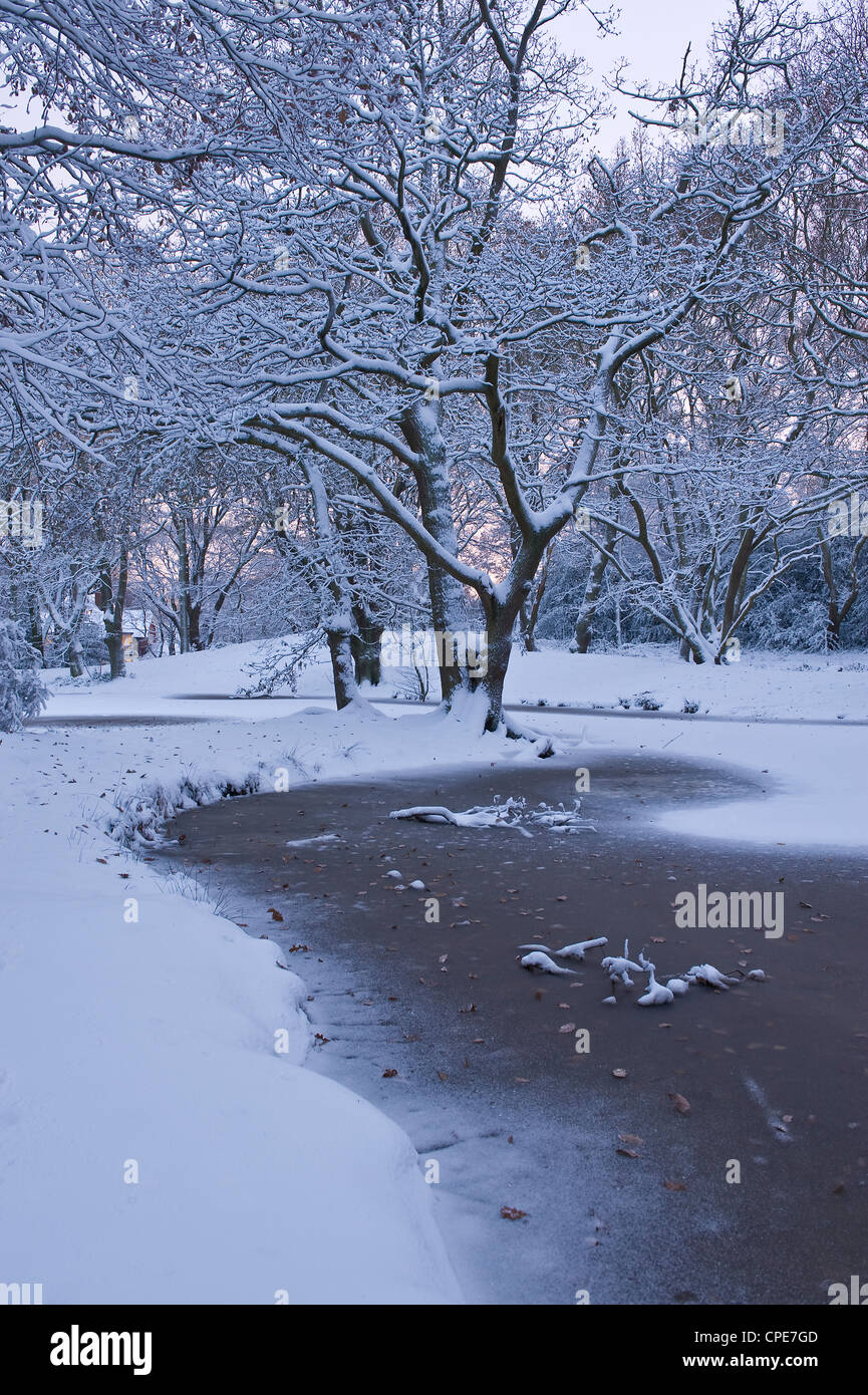 Hampstead Heath in winter, North London, England, United Kingdom, Europe - Stock Image