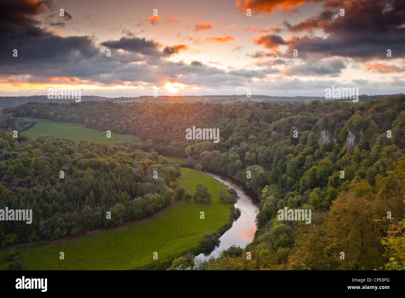Looking down on the River Wye from Symonds Yat rock, Herefordshire, England, United Kingdom, Europe - Stock Image