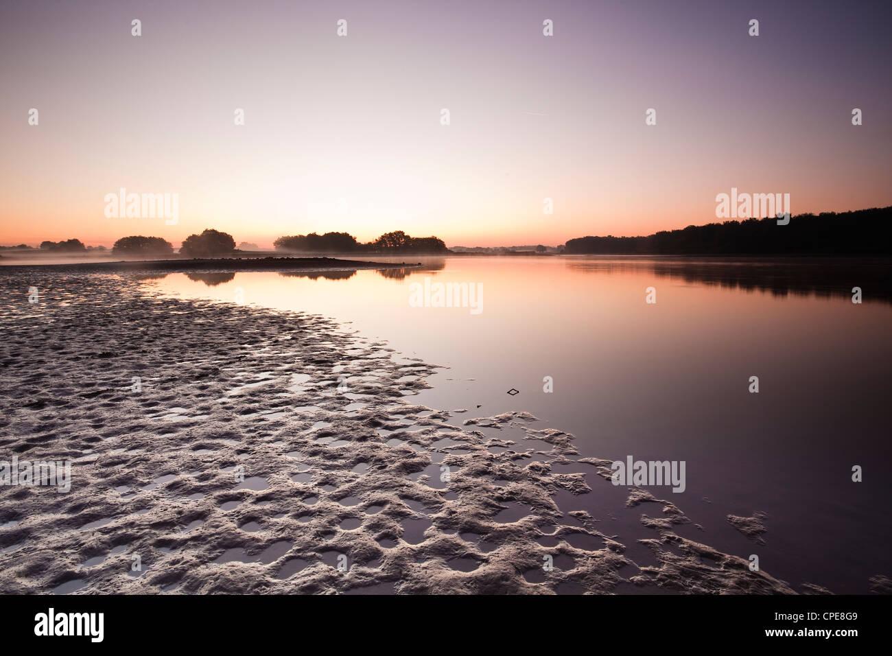 A pond (etang ) in the natural park of La Brenne (Pays aux Mille Etangs), Indre, Loire Valley, Centre, France - Stock Image