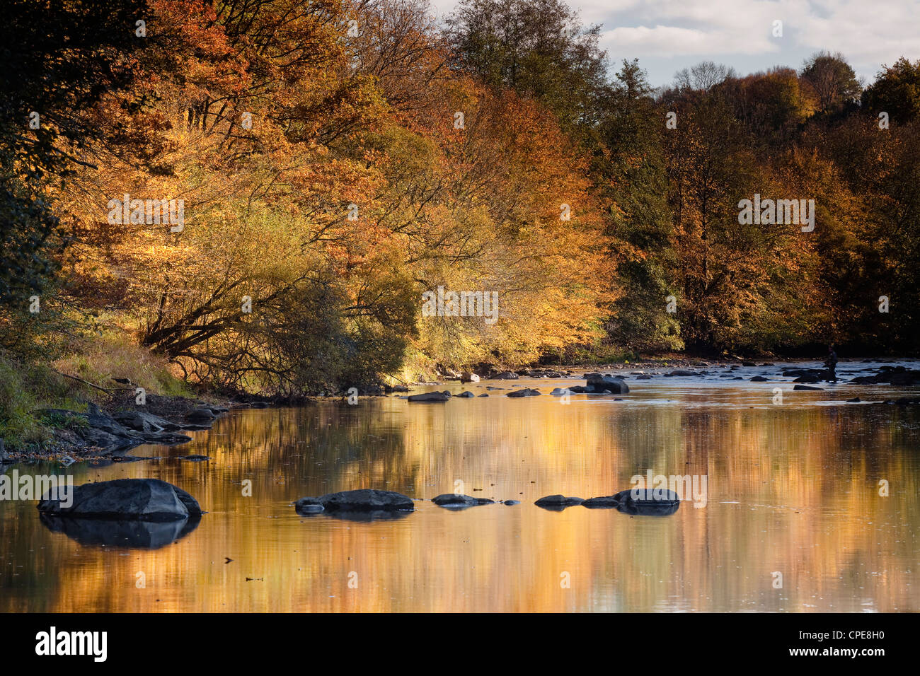 River Creuse, a favourite area of the river of the artist Claude Monet, Limousin, France - Stock Image