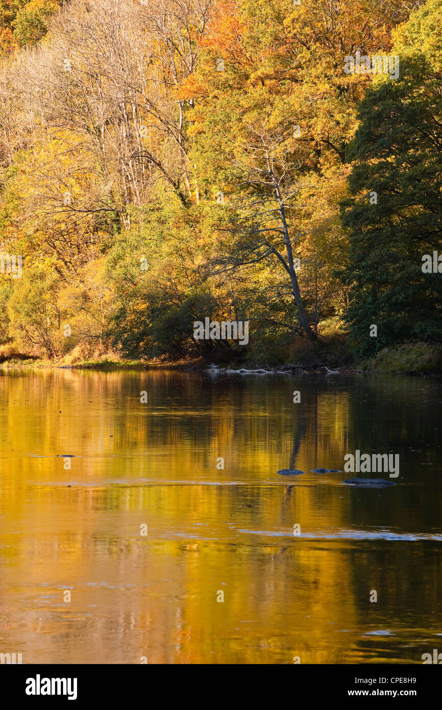 River Creuse, a favourite area of the river of the artist Claude Monet, Limousin, France. - Stock Image