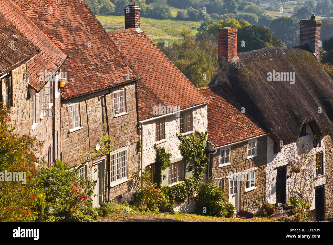 The famous cobbled street of Gold Hill in Shaftesbury, Dorset, England, United Kingdom, Europe Stock Photo