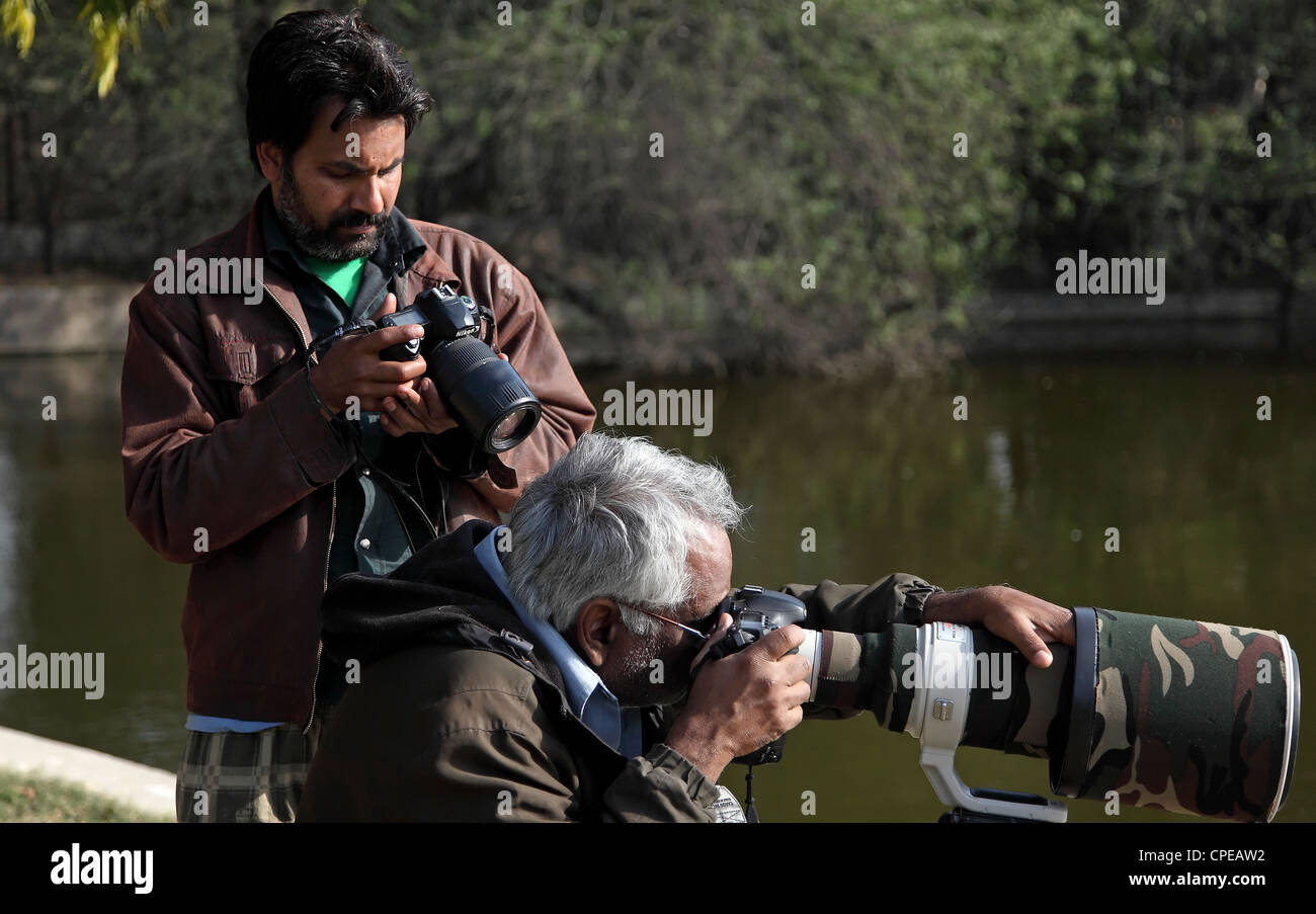 Professional wildlife photographer - Stock Image