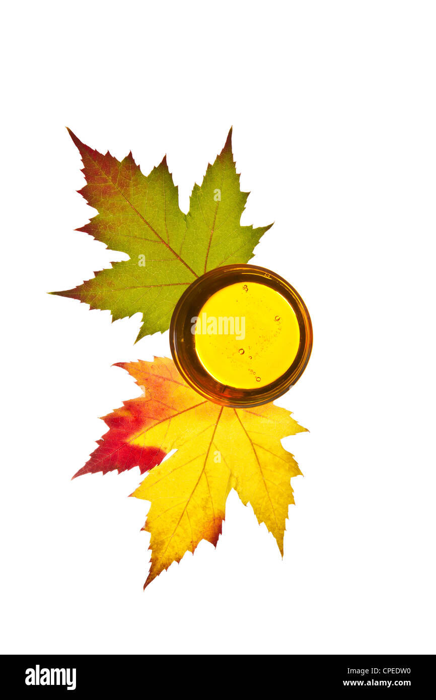Pure golden maple syrup with colorful maple leafs on white background - Stock Image