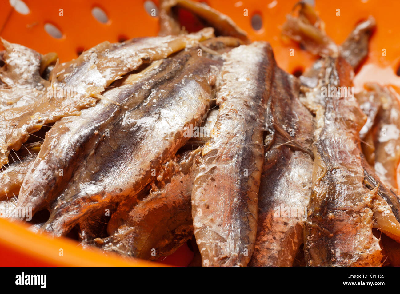 salted anchovies - Stock Image