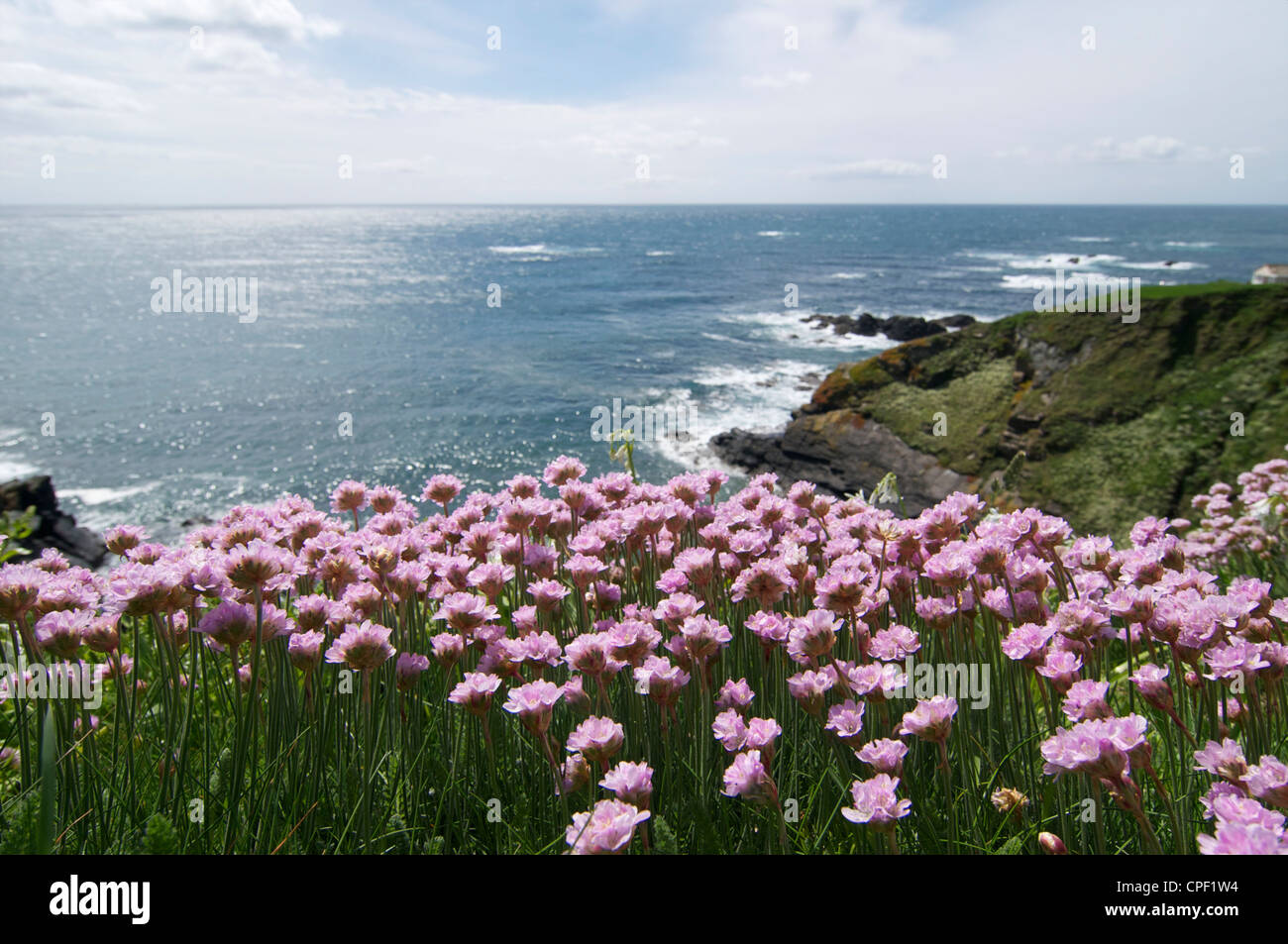 The Lizard Point in Cornwall, the most southerly part of the mainland of the UK - Stock Image