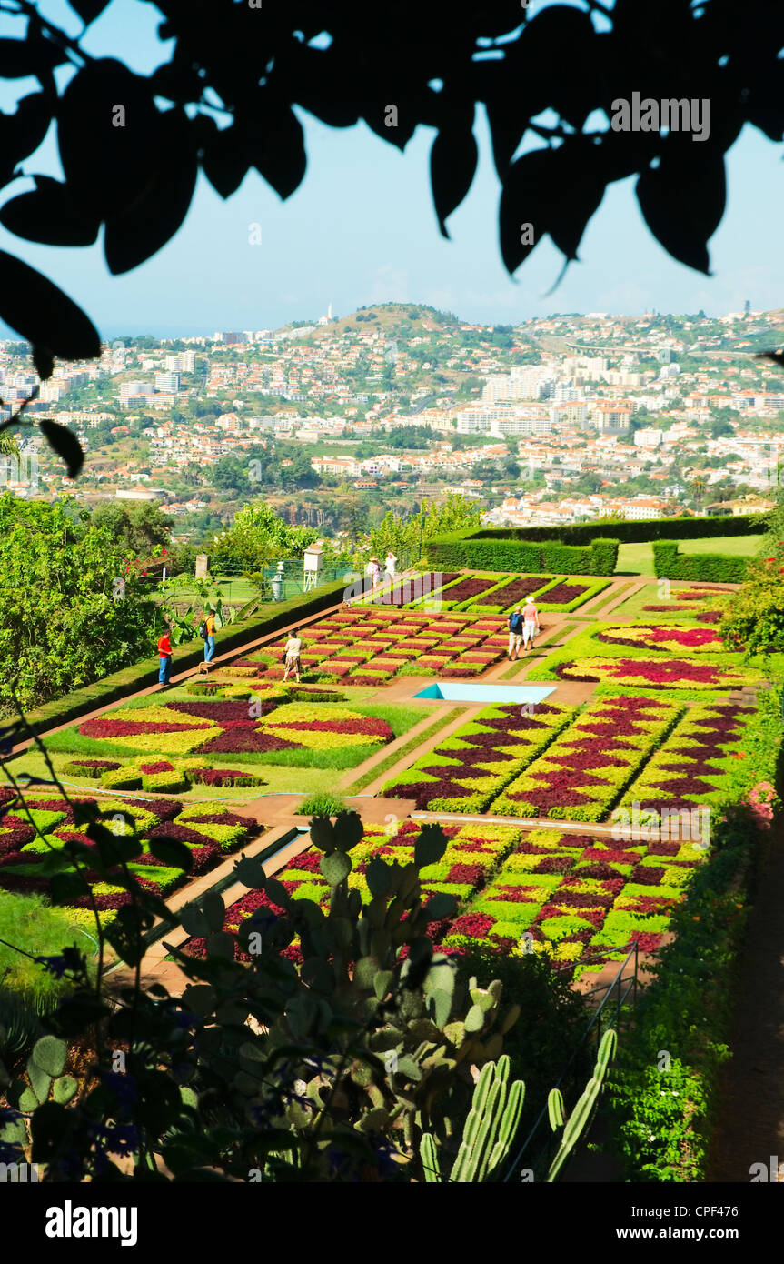 Perspective of the city of Funchal from Botanical Garden - Stock Image