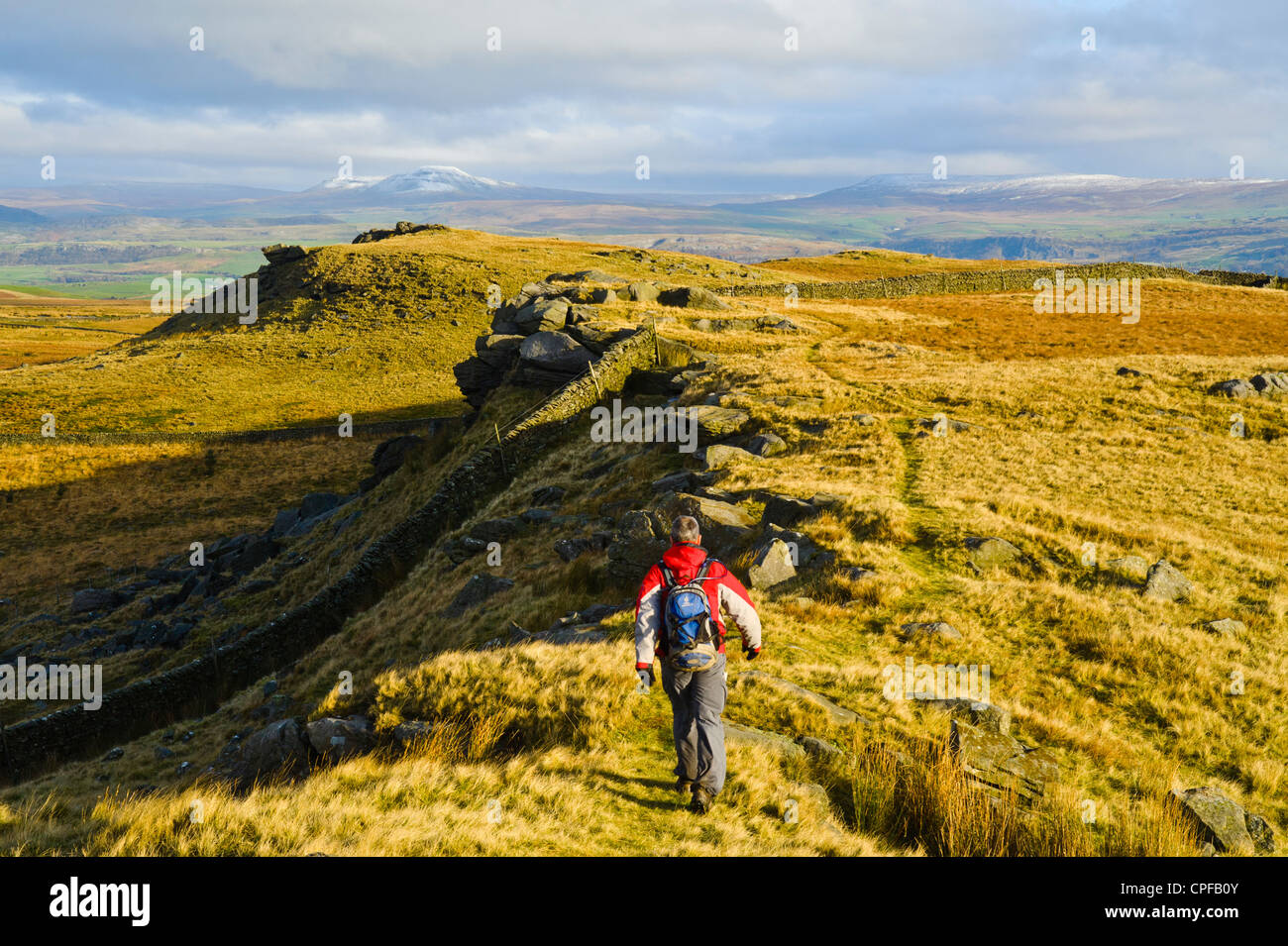 Walker on Whelp Stone Crag in the Forest of Bowland Lancashire England; Pen-y-Ghent in Yorkshire on the horizon - Stock Image