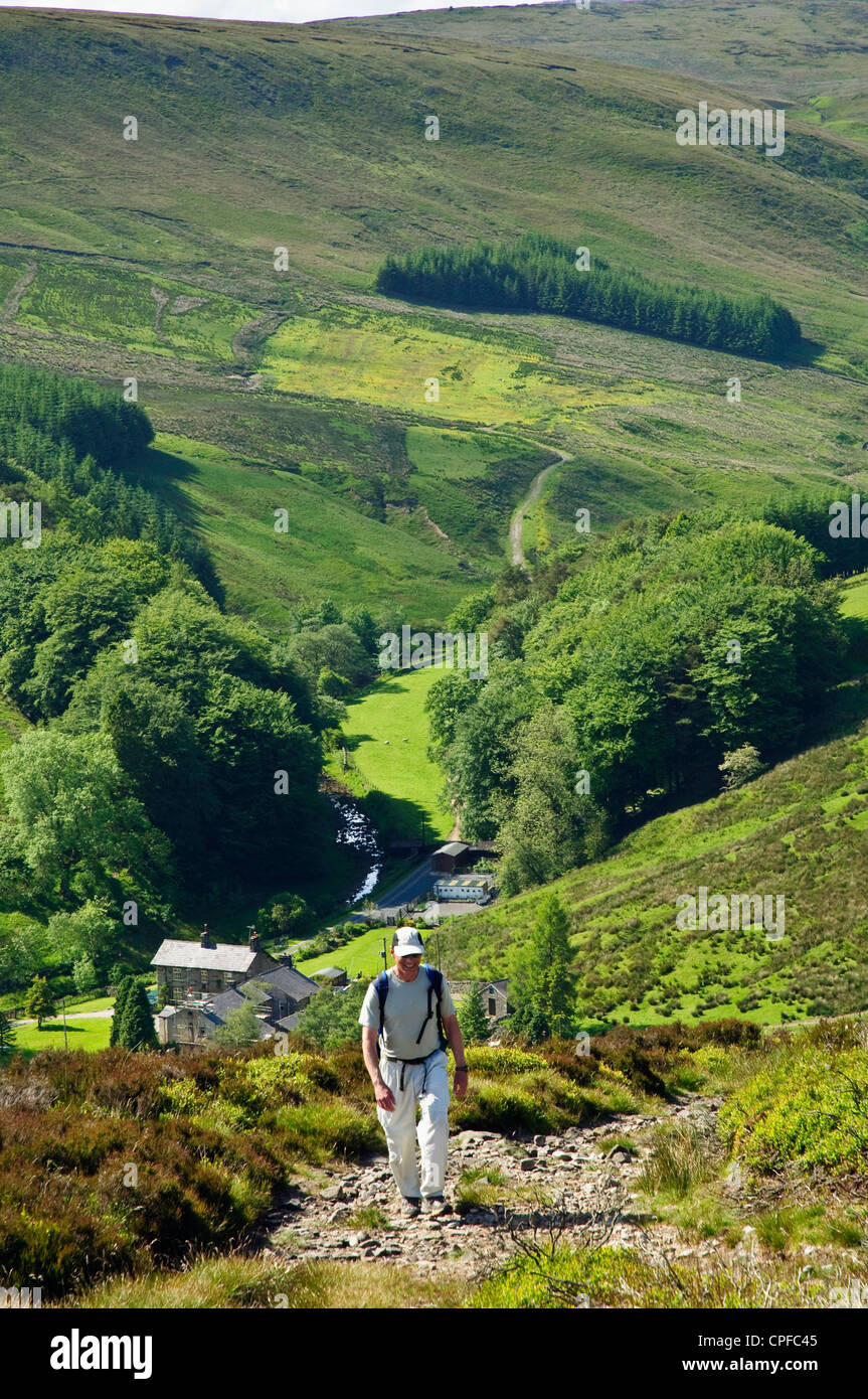 Walker above Whitendale in the Forest of Bowland AONB - Stock Image