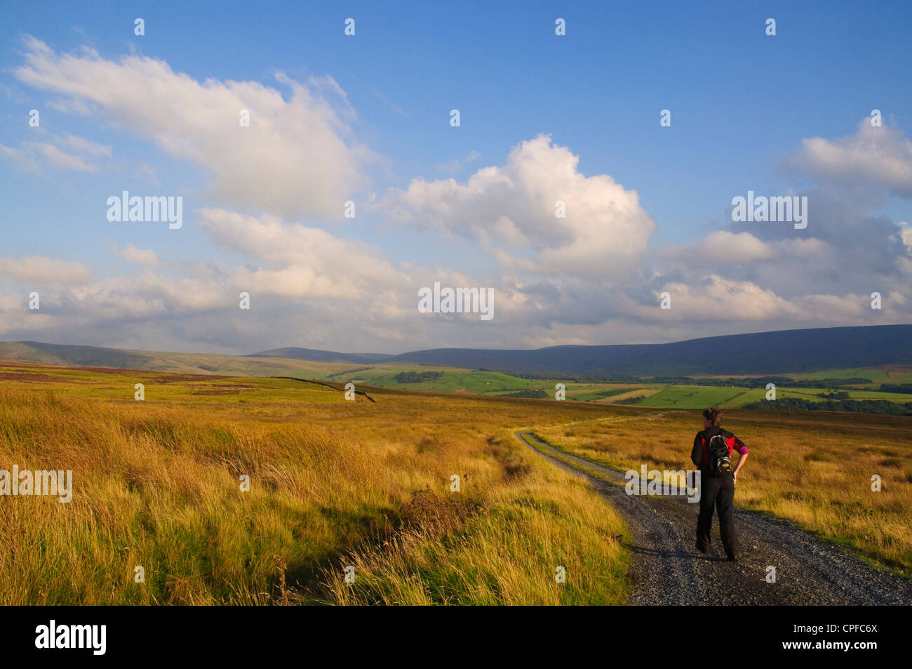 Walker on Ward's Stone, in the Forest of Bowland AONB - Stock Image