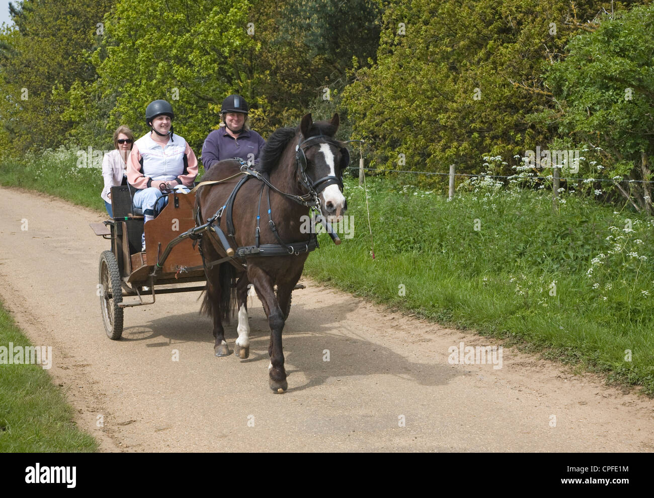 RDA Riding for Disabled Sutton Suffolk England - Stock Image