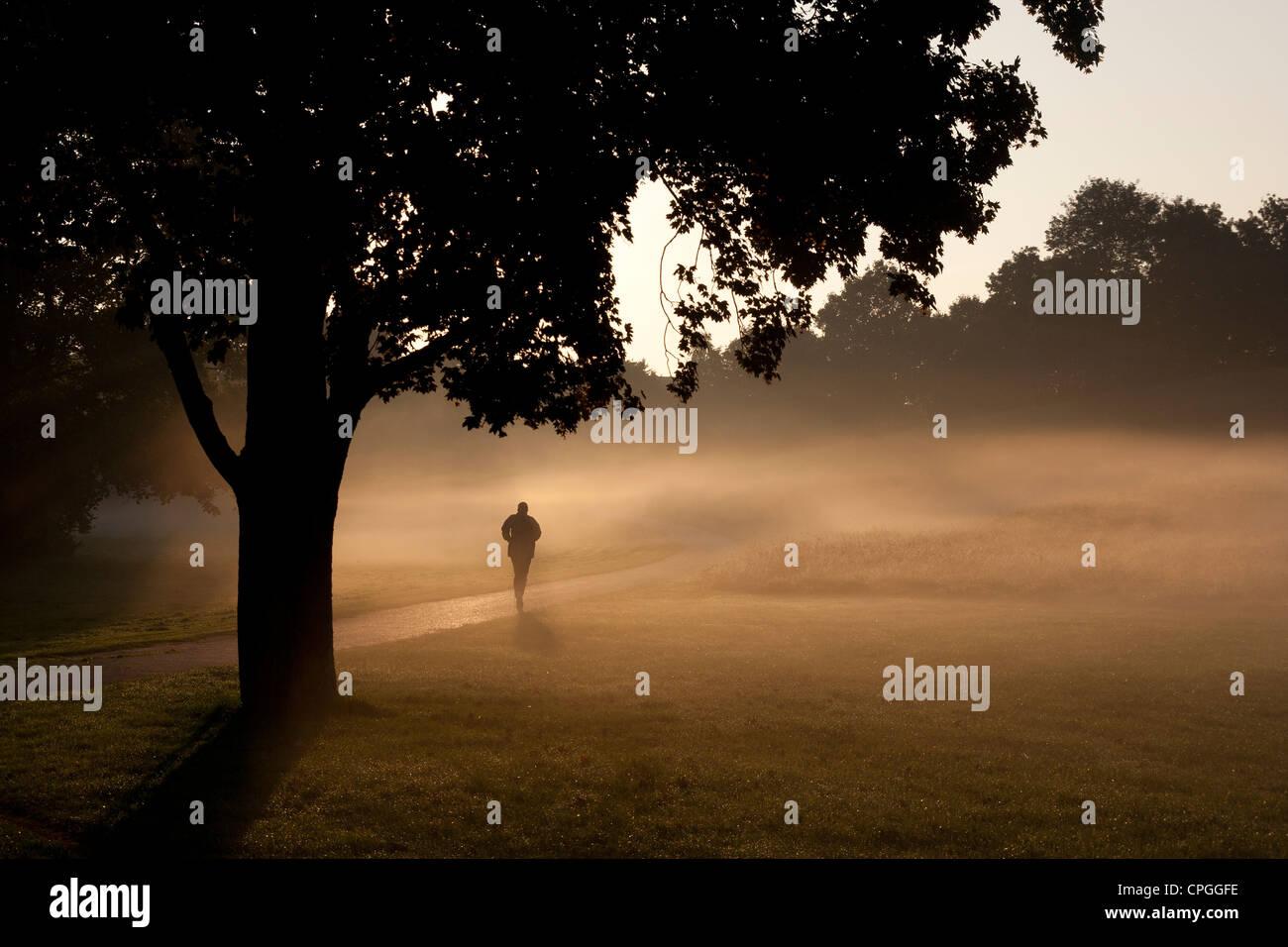 morgendliches Joggen im Park - Stock Image
