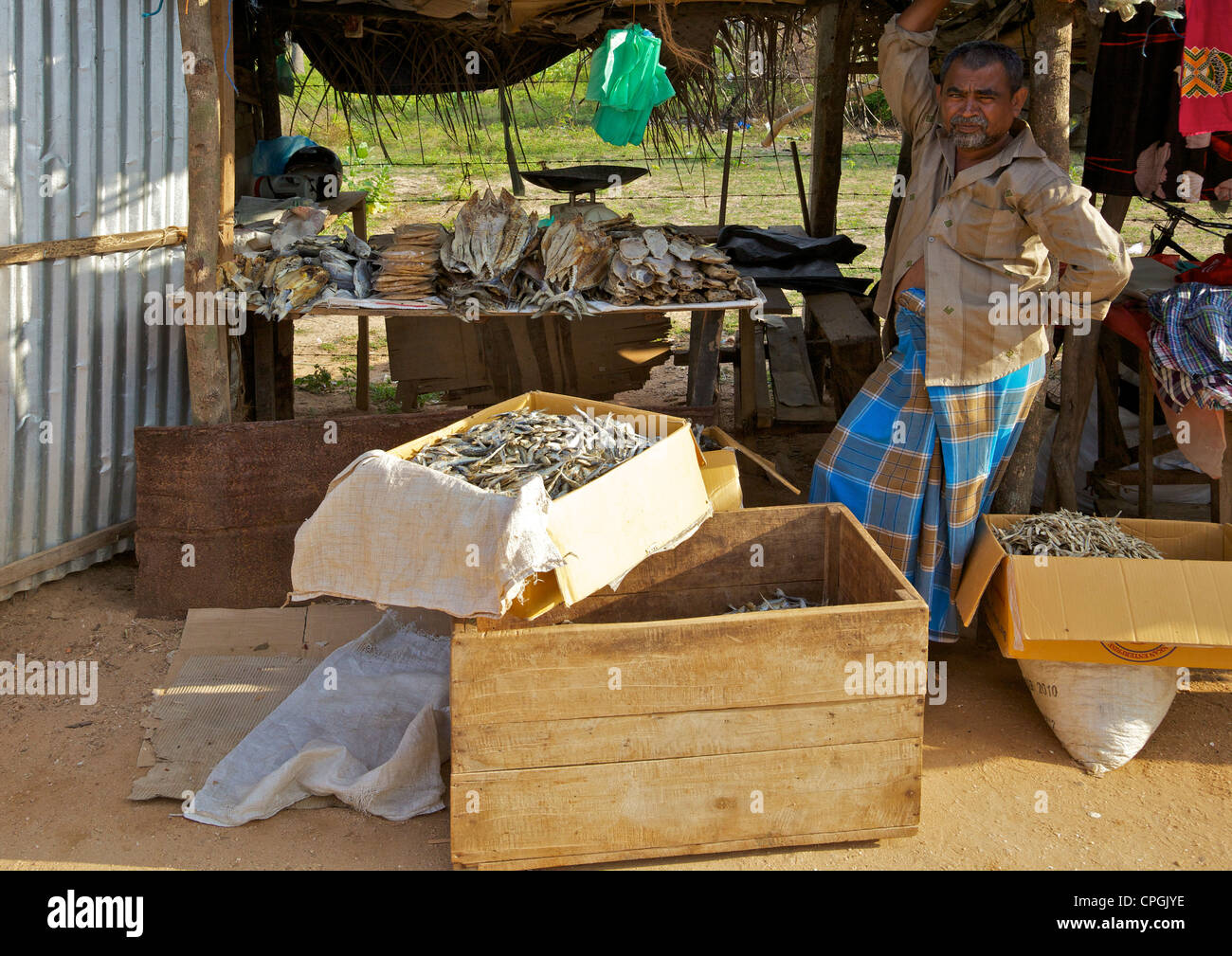 Market stall holder selling dried fish, Nilaveli, Trincomalee, Sri Lanka, Asia - Stock Image