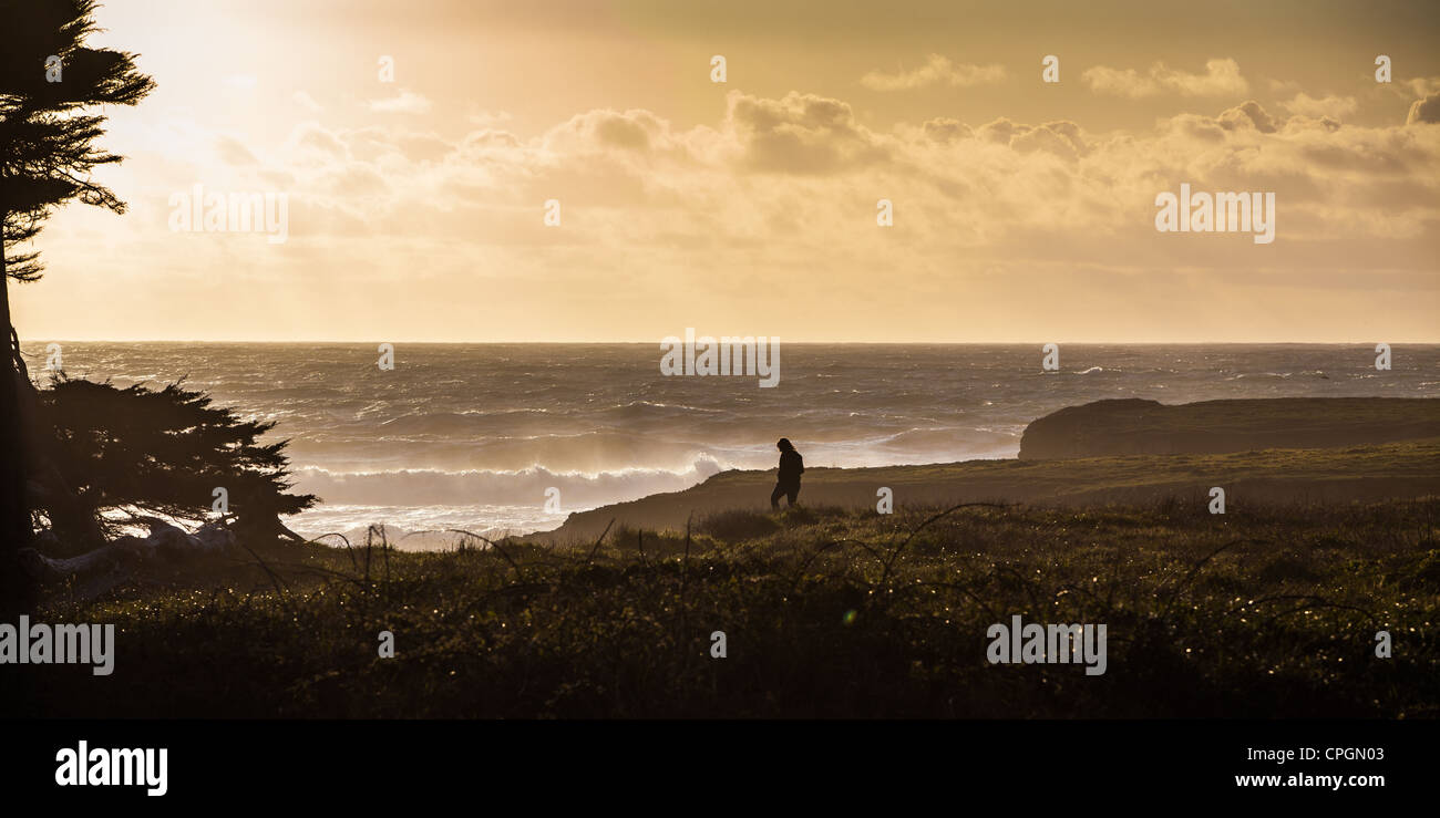 Sunset on the beach in Fort Bragg California Mendocino County - Stock Image
