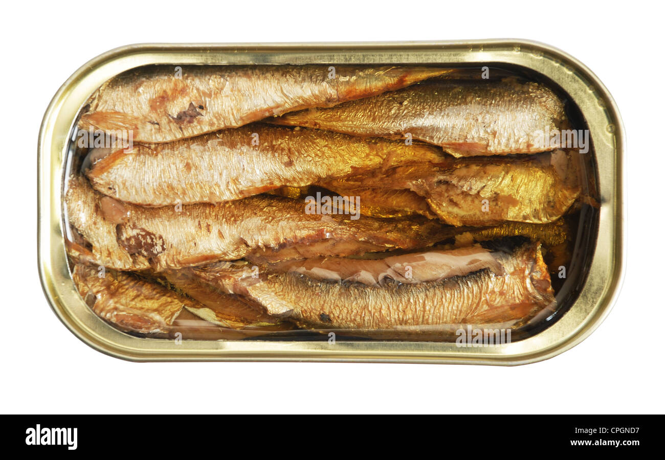 isolated blank tin of fish over white including clipping path Stock Photo