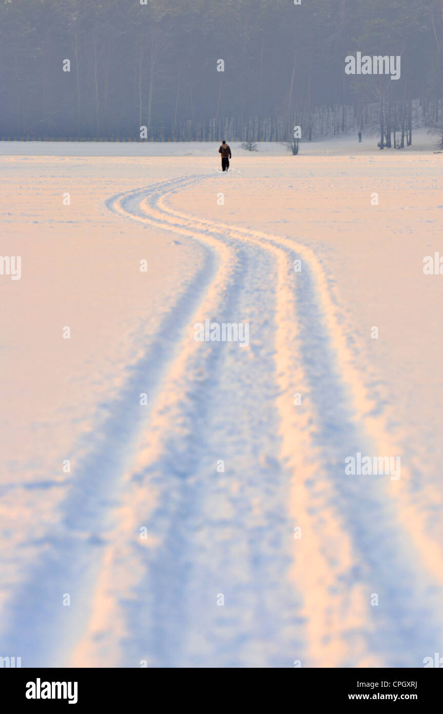 Snow mobile trails in snow, Masovia region, Poland - Stock Image