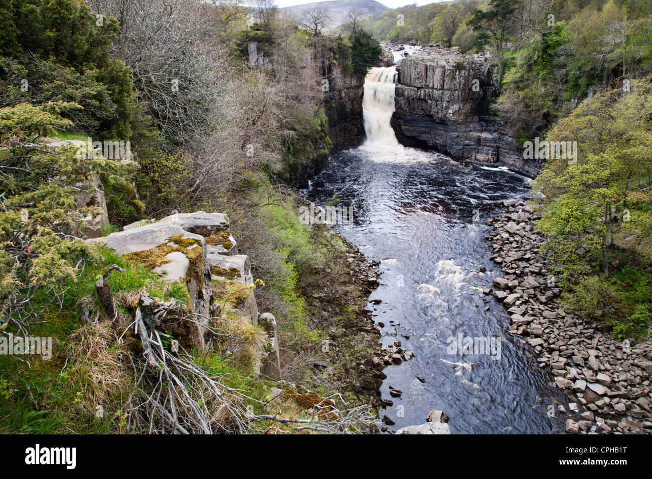 High Force in Upper Teesdale County Durham England - Stock Image