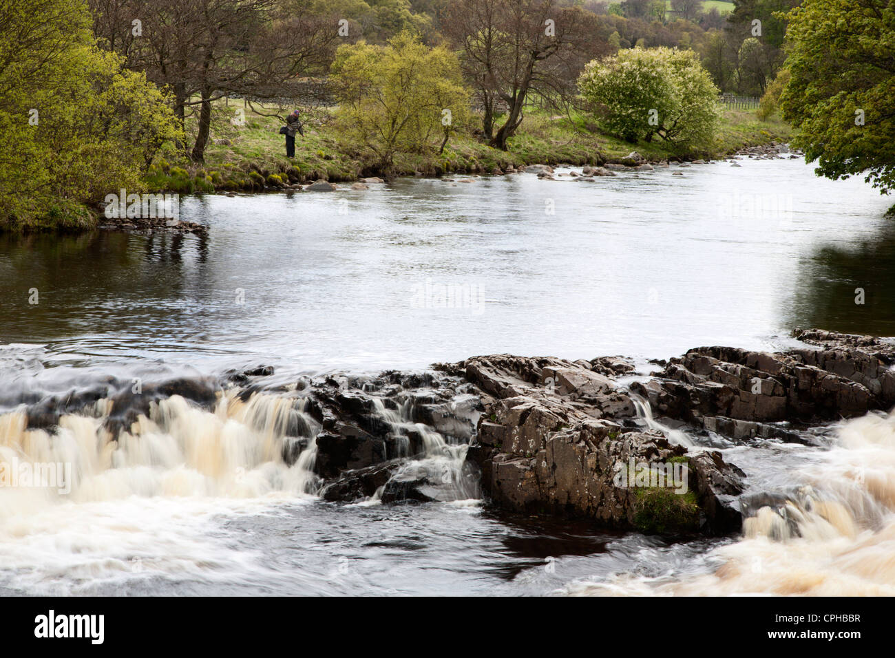 River Tees between High and Low Force Upper Teesdale County Durham England - Stock Image
