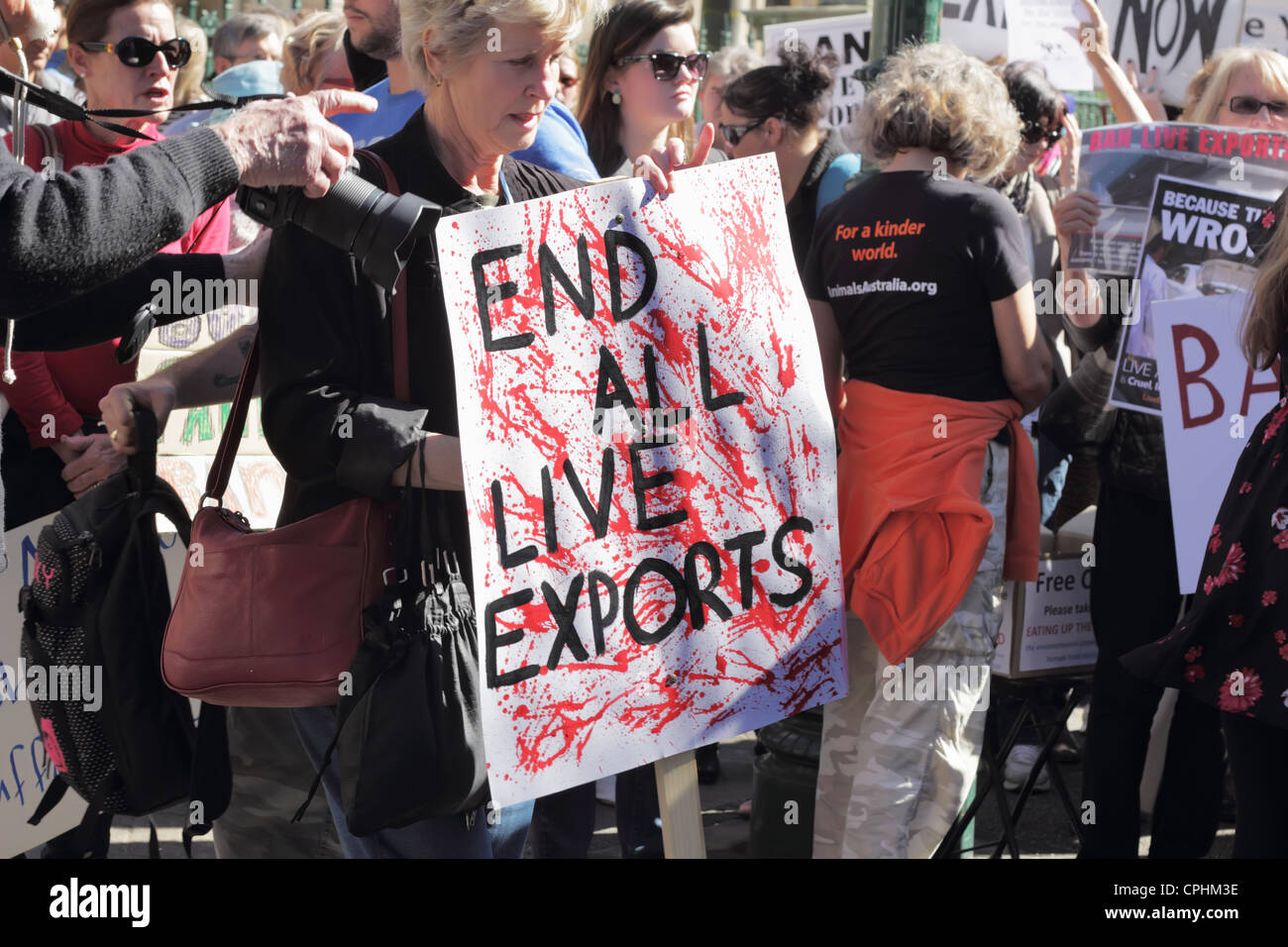 End All Live Exports - Stock Image