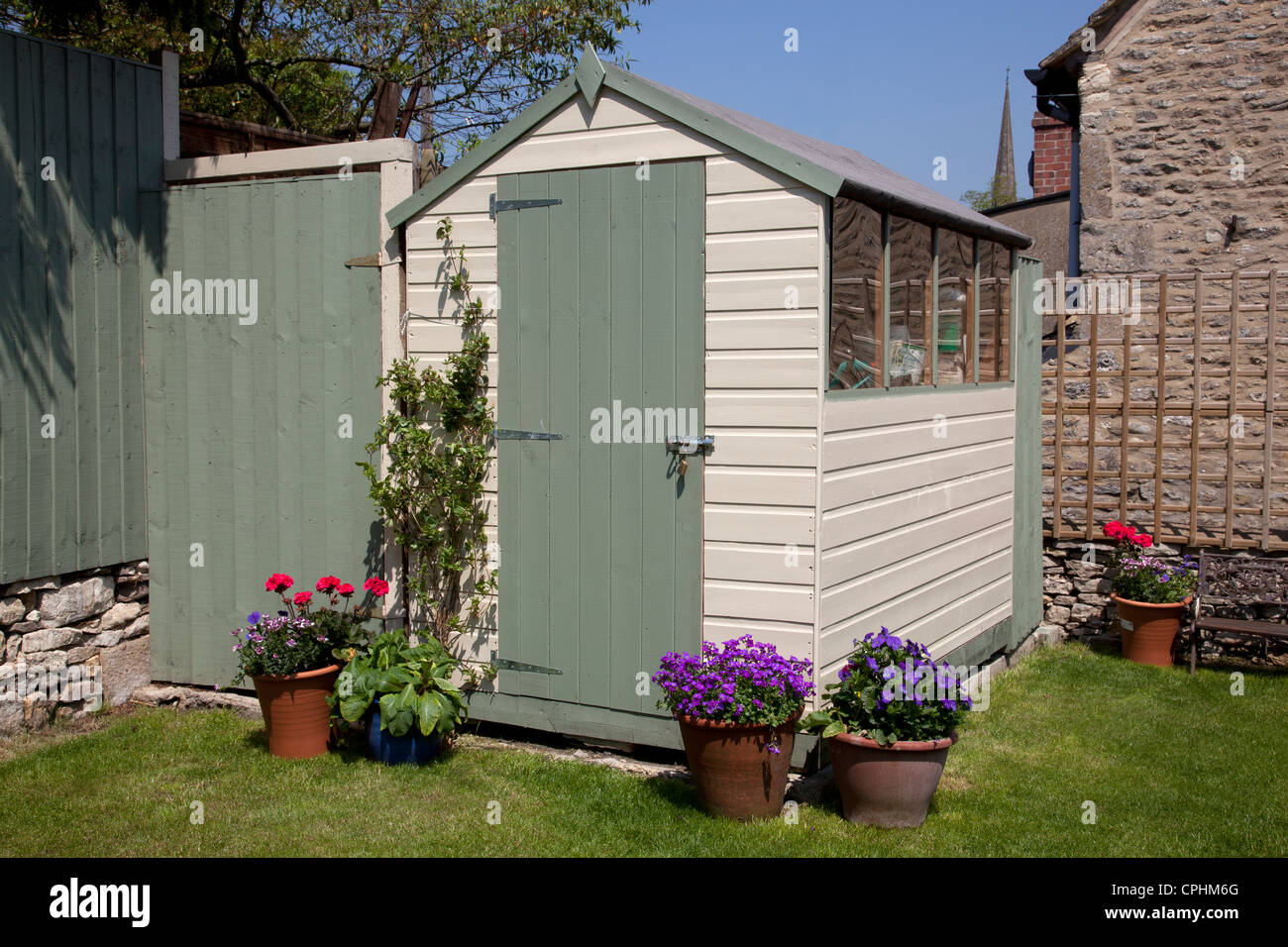 painted garden shed in small English town house garden with pots of flowers - Stock Image