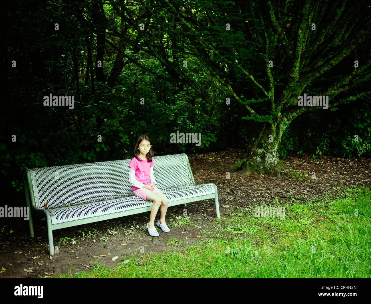 Girl sits under tree on park bench. - Stock Image