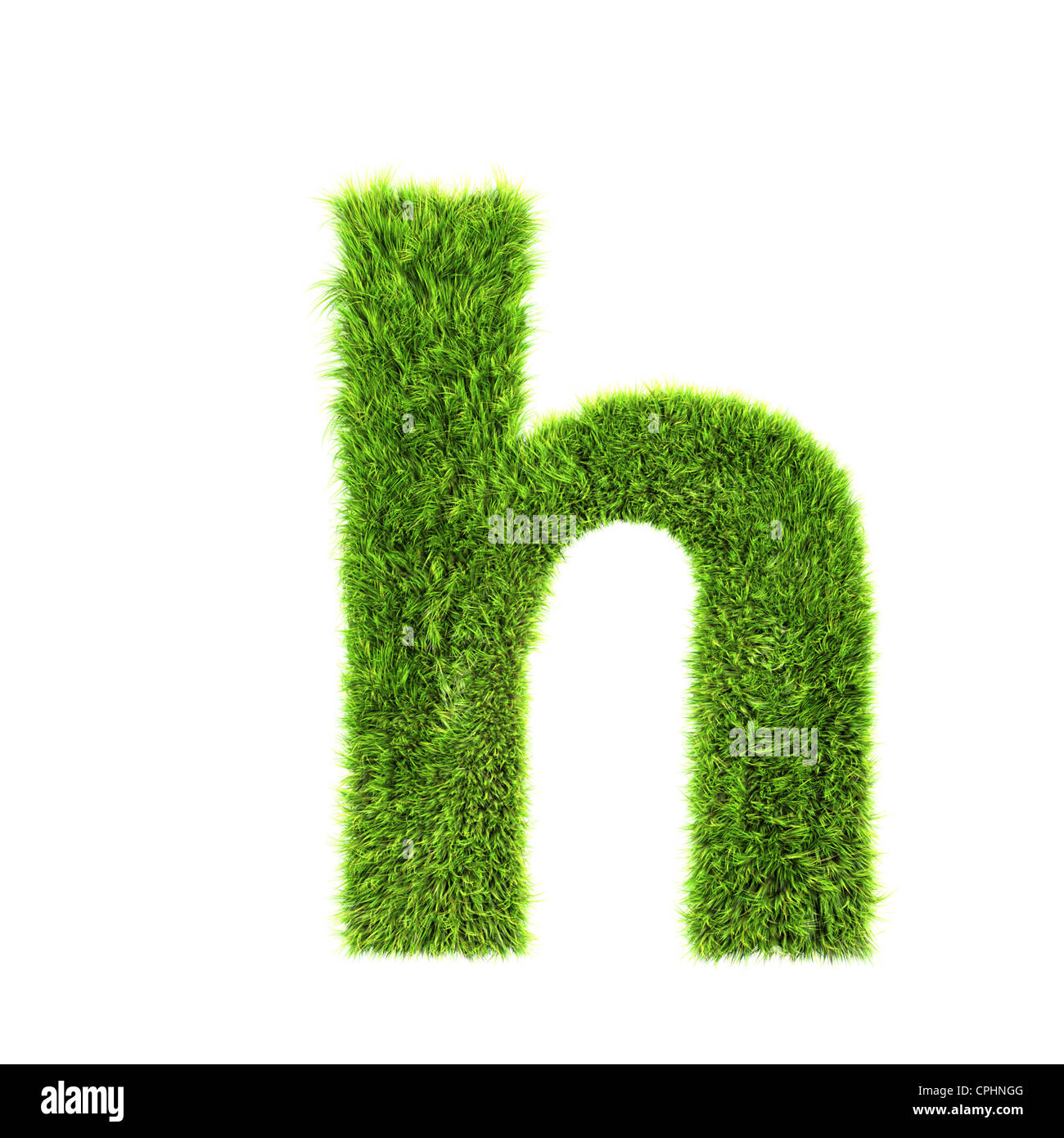 fb5f005d5 3d grass letter isolated on white background - h - Stock Image