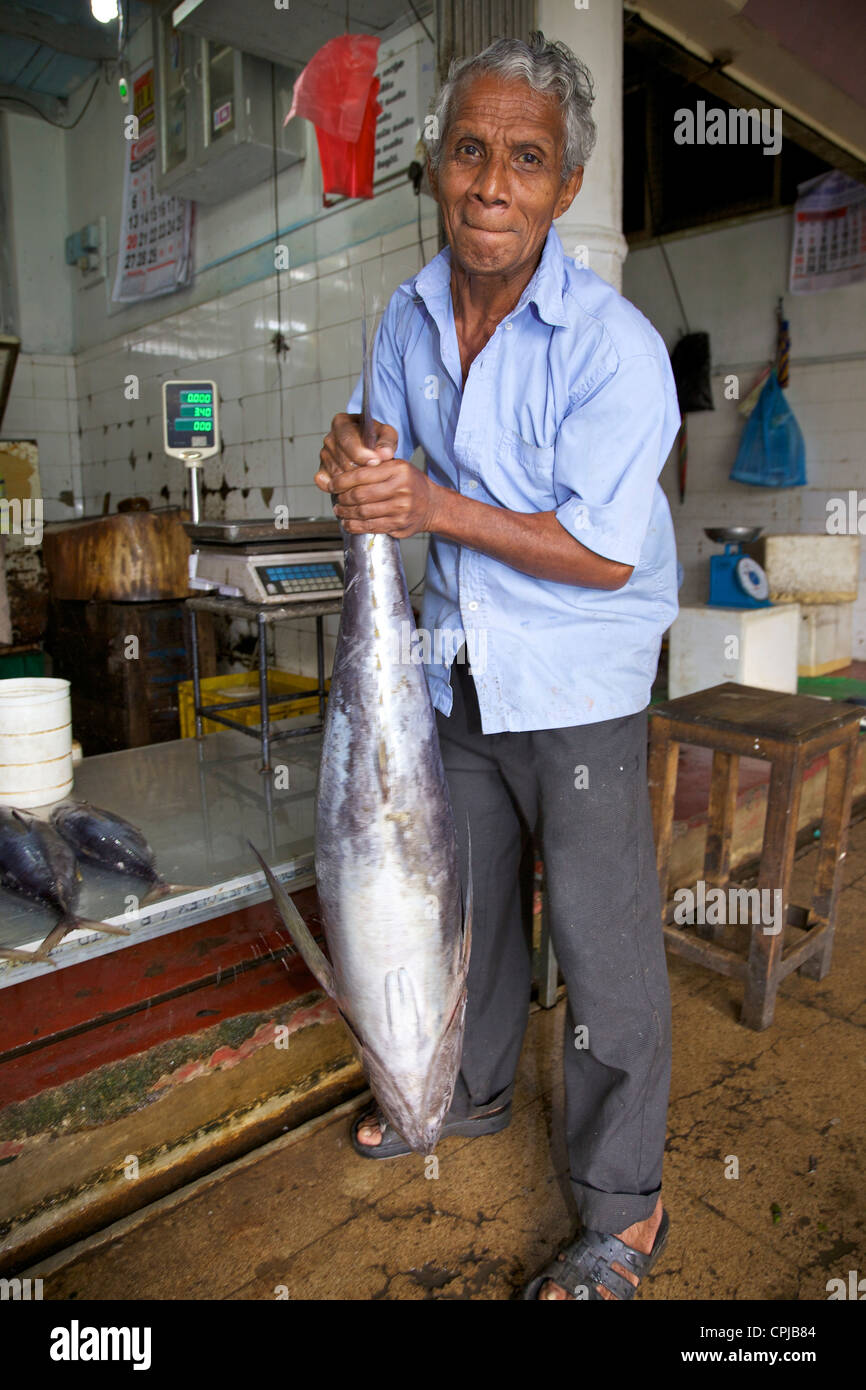 Fishmonger with fresh fish for sale at Kandy Market, Sri Lanka, Asia - Stock Image