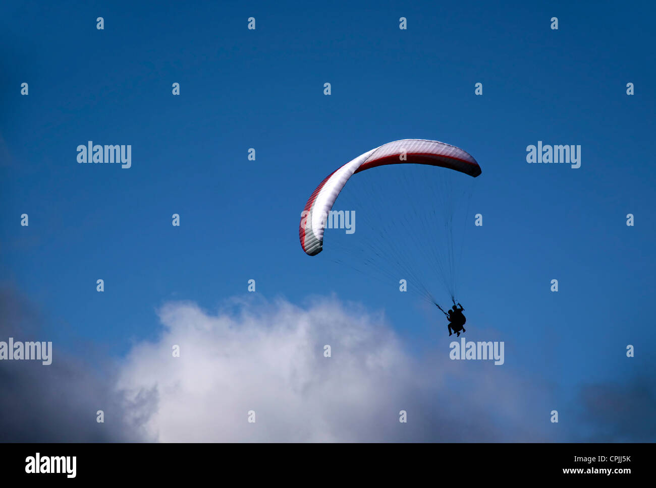 Paraglider in the clouds at Bobs Peak, Queentown, Otago, South island, New Zealand Stock Photo