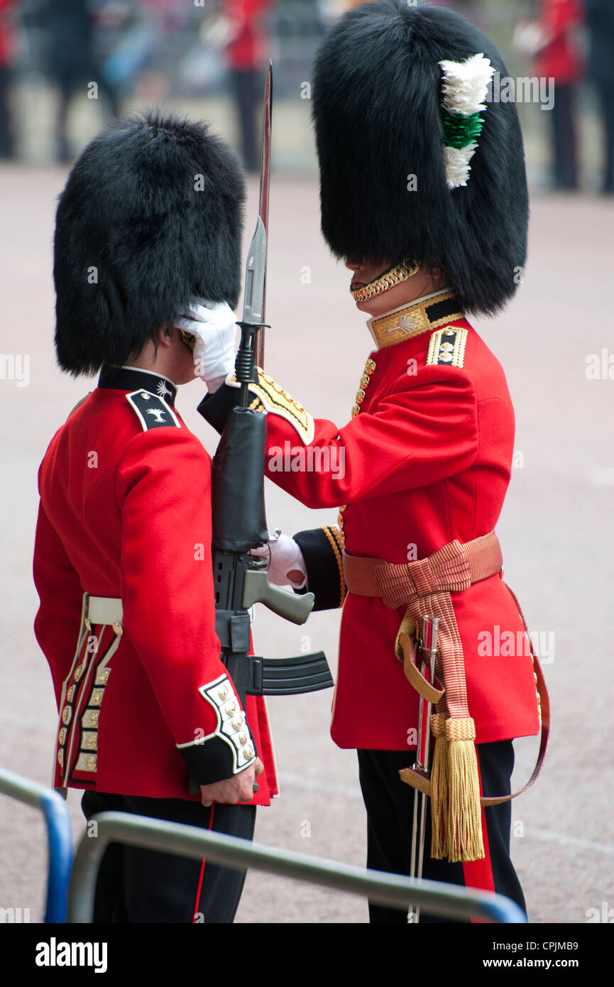 Guardsman adjusting the bearskin hat of another soldier on the Mall in London during the Royal Wedding. - Stock Image