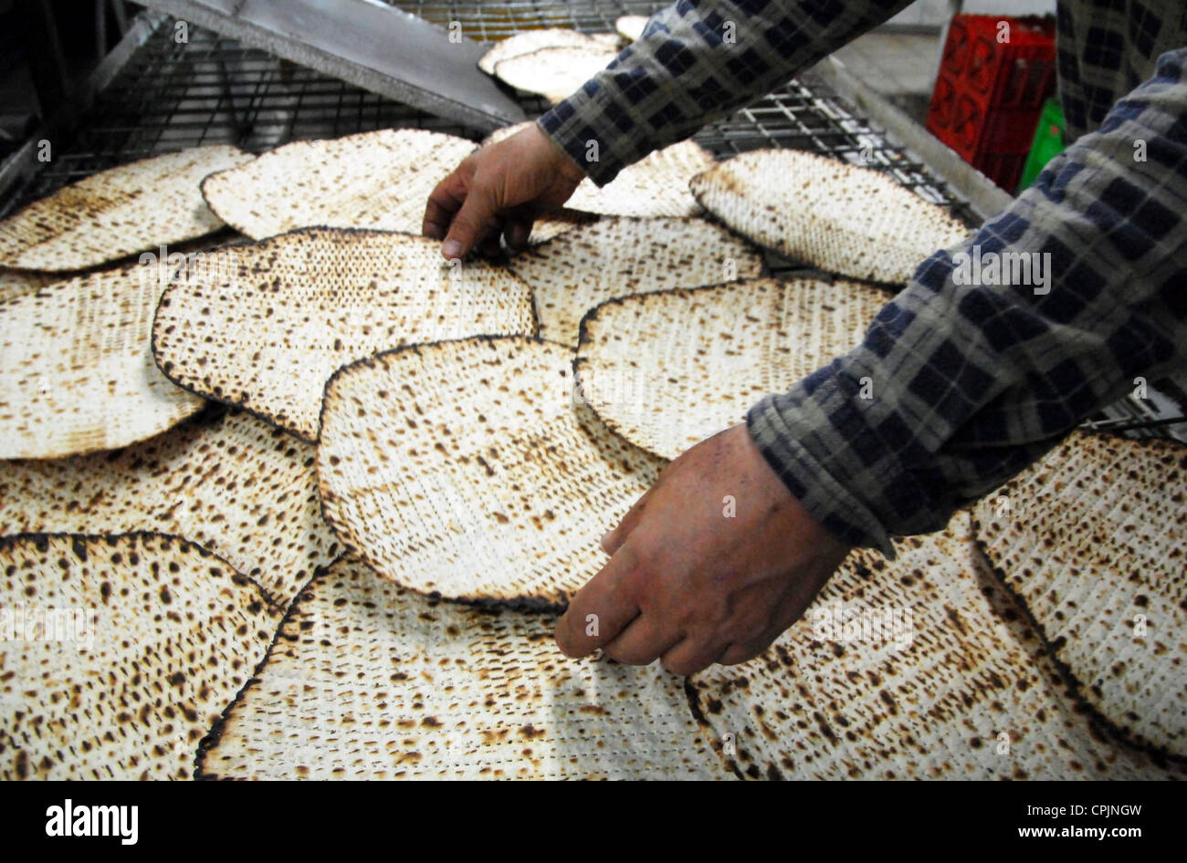 A hand-made glat kosher matzah at matzot factory for passover Jewish holy day. - Stock Image