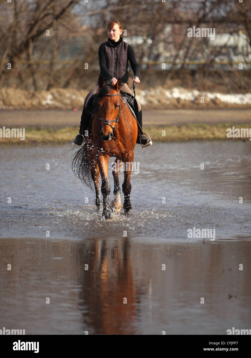 Girl horseback riding on a bay horse through the water of small lake in Russia - Stock Image