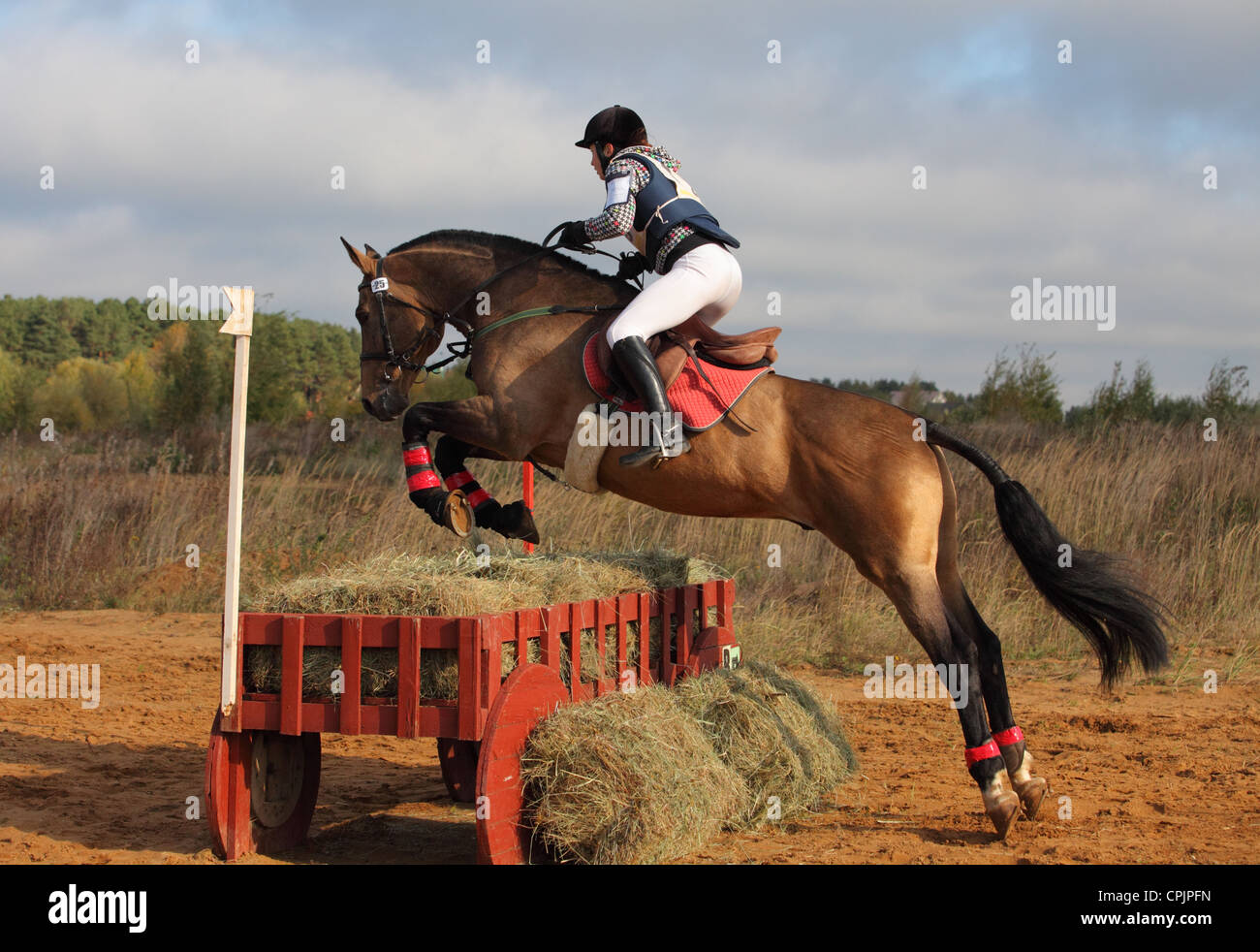 Horse rider jumps a fence during a three day eventing - Stock Image