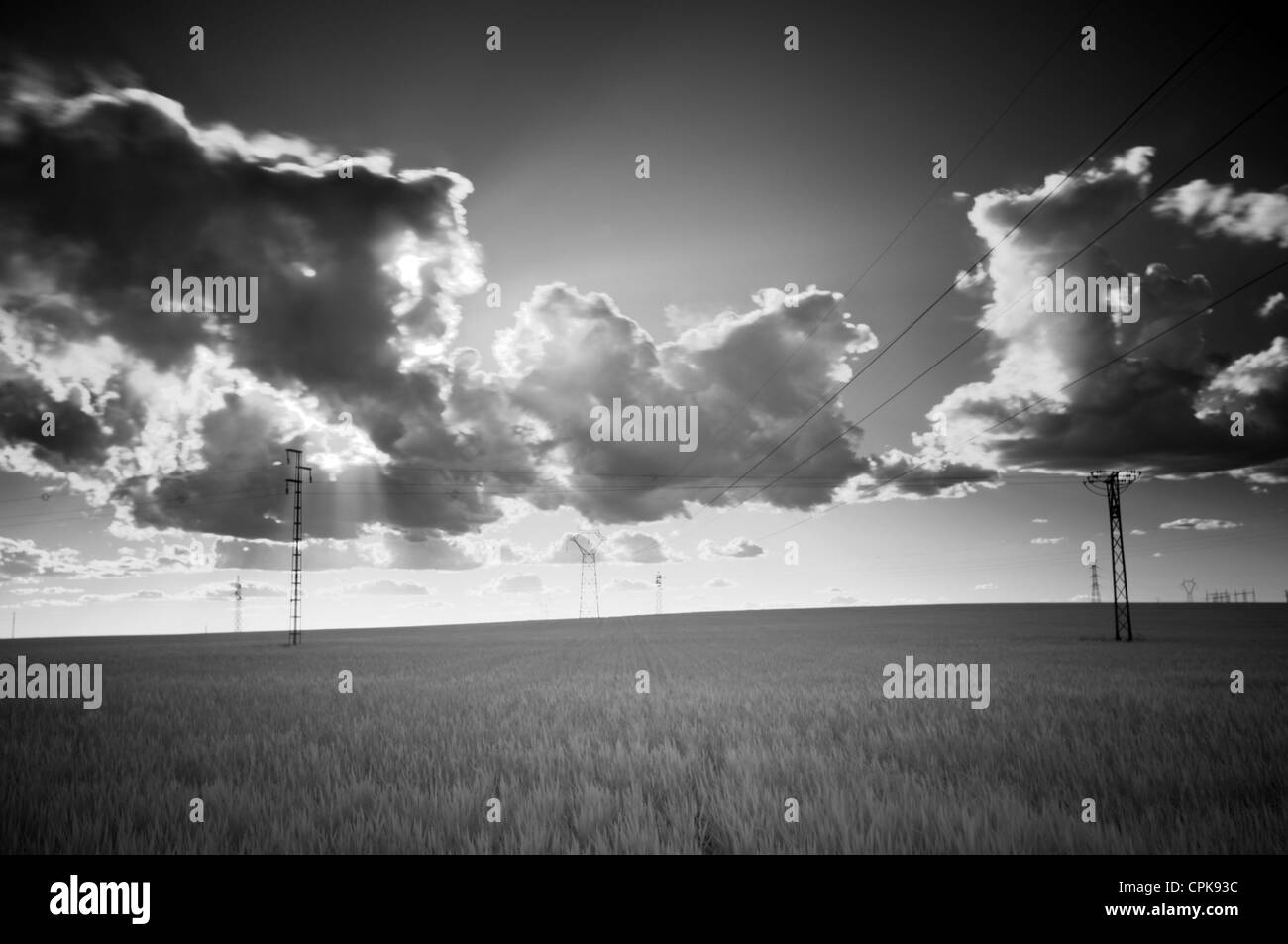 Infrared image of a wheat field and power line, Sanlucar la Mayor, Seville, Spain - Stock Image
