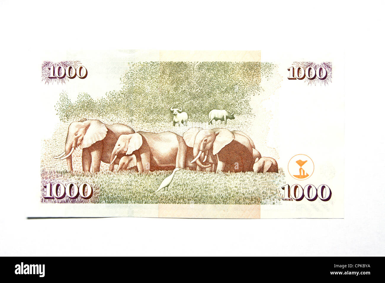 Currency of Kenya (shilling) (reverse side) Stock Photo