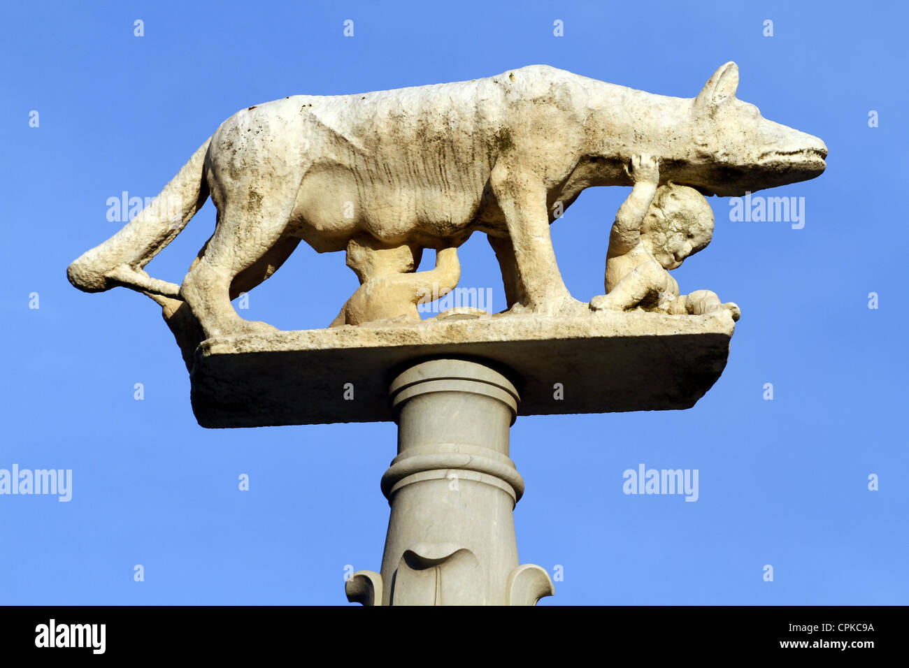 STATUE OF SHE-WOLF WITH ROMULUS & REMUS CATHEDRAL SIENA TUSCANY ITALY 10 May 2012 - Stock Image