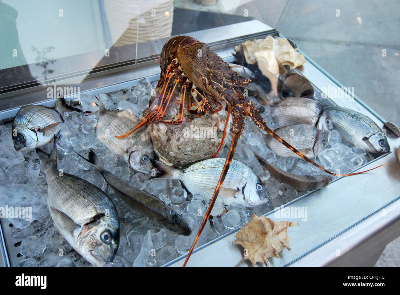 Fresh fish and Lobster in a refrigerator, greece. - Stock Image