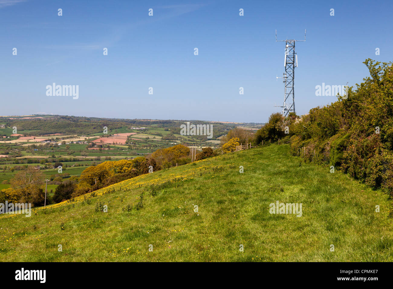 Telecommunications mast in the middle of the countryside, Musbury, Devon - Stock Image