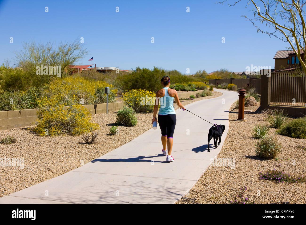 Pedestrian path, Fireside at Desert Ridge, N. Scottsdale, AZ, USA - Stock Image