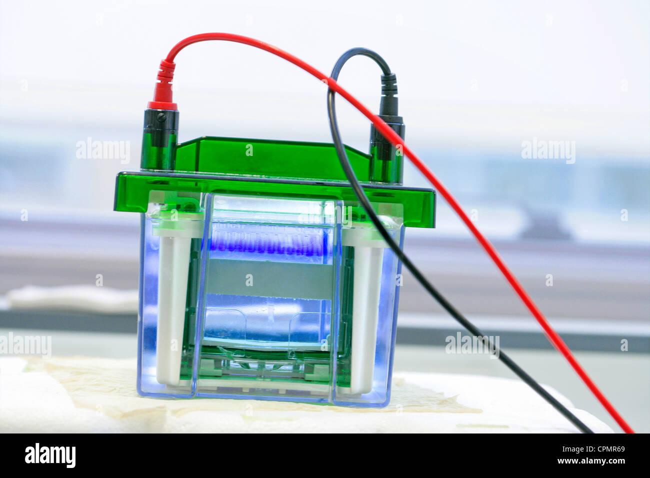 ELECTROPHORESIS - Stock Image