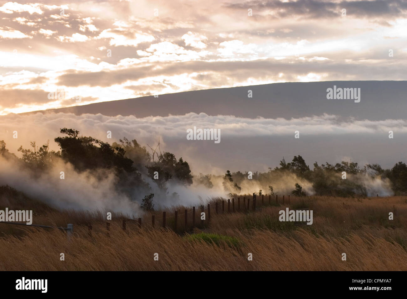 Elk284-2282 Hawaii, HI, Volcanoes NP, Steaming Bluff landscape, steam vents - Stock Image