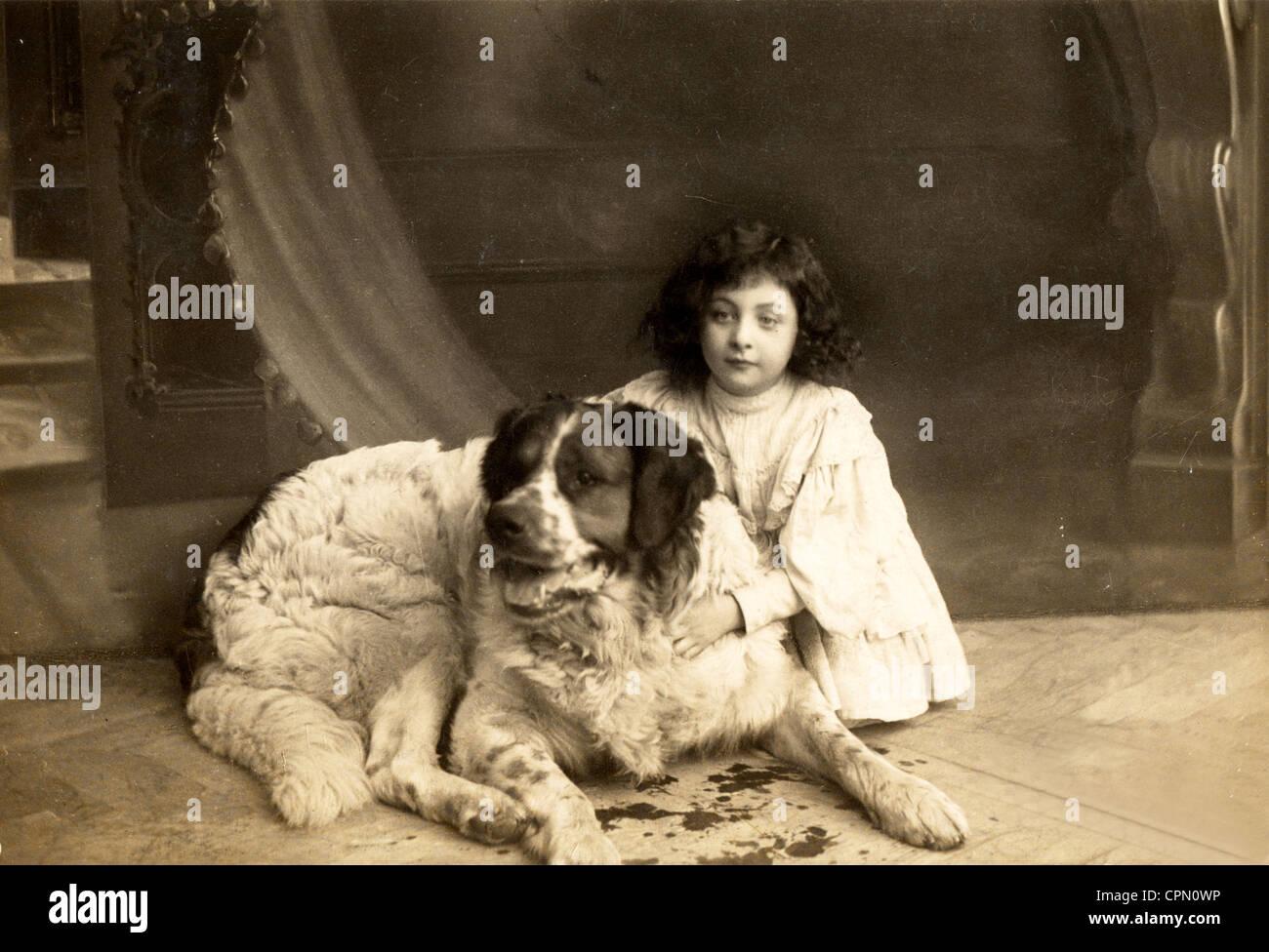 Little Girl Holding St. Bernard Dog - Stock Image