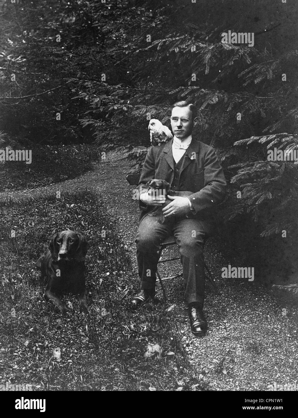 Wealthy Young Man Outdoors with Two Dogs & Parrot - Stock Image
